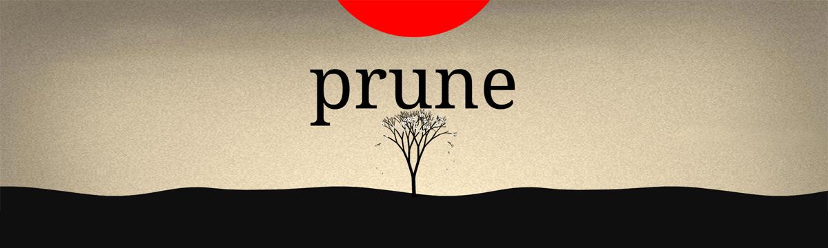 http://www.prunegame.com/img/thumbnail_fb.jpg